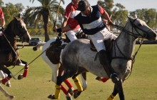 polo rules how to guide
