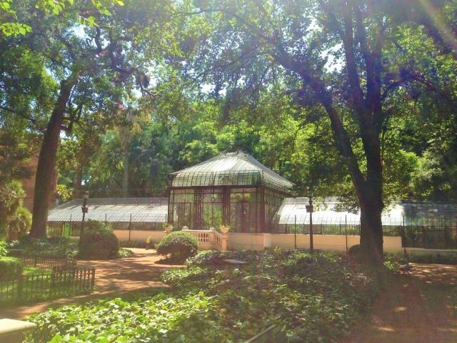 Botanical Garden buenos aires